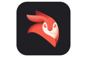 Enlight Videoleap Video Editor (iPhone)